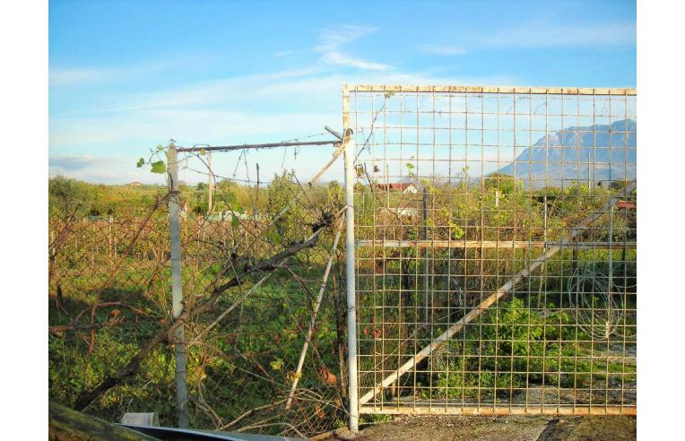 Foto 3 - Altro in Vendita da Privato - Eboli (Salerno)