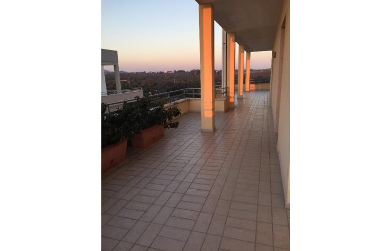 Foto 3 - Appartamento in Vendita da Privato - Matino (Lecce)
