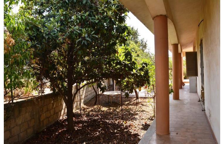 Foto 3 - Villa in Vendita da Privato - Noto (Siracusa)