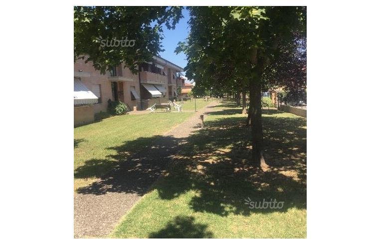 Foto 1 - Appartamento in Vendita da Privato - Buonconvento (Siena)