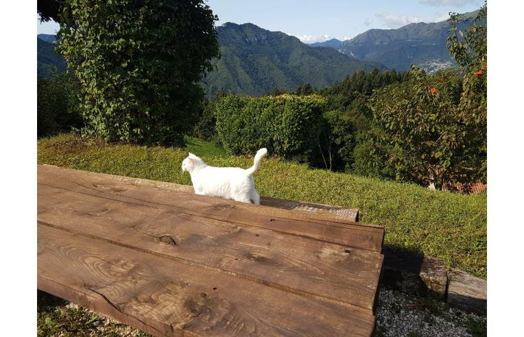 Privato affitta rustico casale vacanze bilocale nuovo for Brescia affitto bilocale arredato