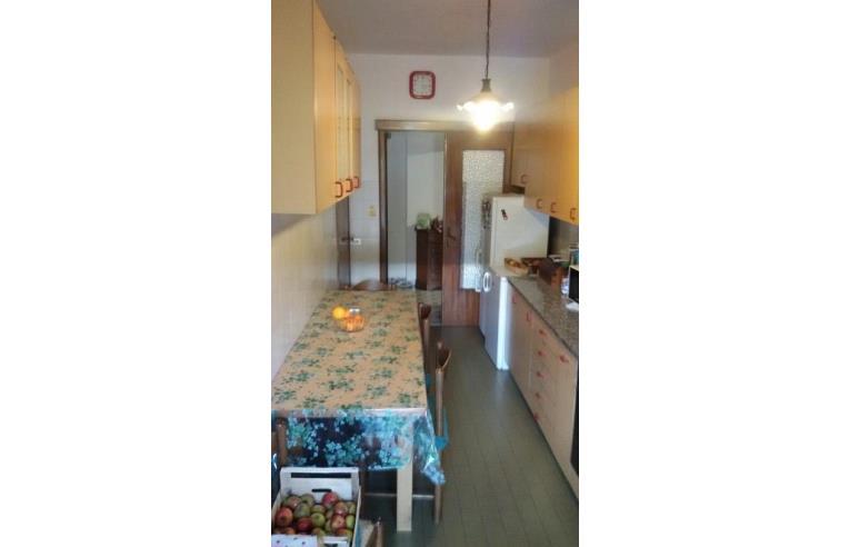 Foto 4 - Appartamento in Vendita da Privato - Massa, Frazione Centro città