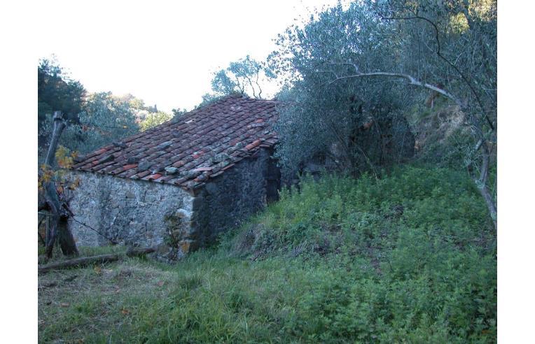 Foto 5 - Rustico/Casale in Vendita da Privato - Fosdinovo, Frazione Giucano