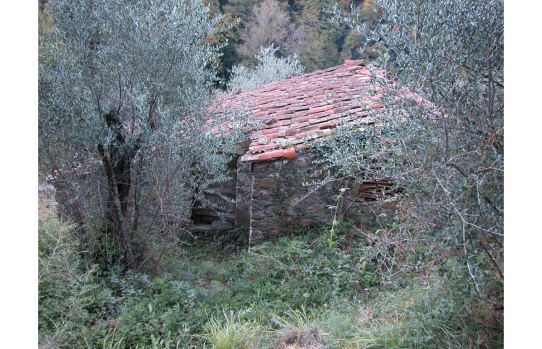 Foto 4 - Rustico/Casale in Vendita da Privato - Fosdinovo, Frazione Giucano