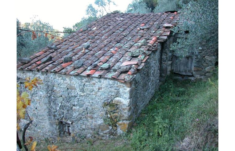 Foto 3 - Rustico/Casale in Vendita da Privato - Fosdinovo, Frazione Giucano