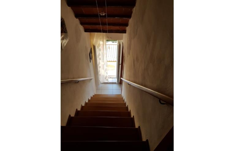 Foto 4 - Altro in Vendita da Privato - Castiglion Fibocchi (Arezzo)