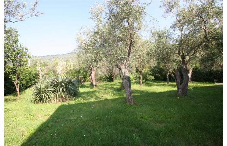 Foto 7 - Villa in Vendita da Privato - Calci, Frazione La Corte