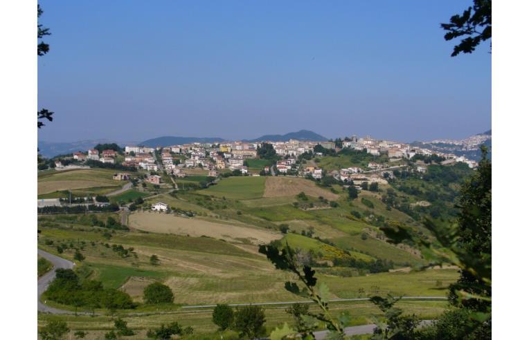 Foto 6 - Altro in Vendita da Privato - Celenza sul Trigno (Chieti)