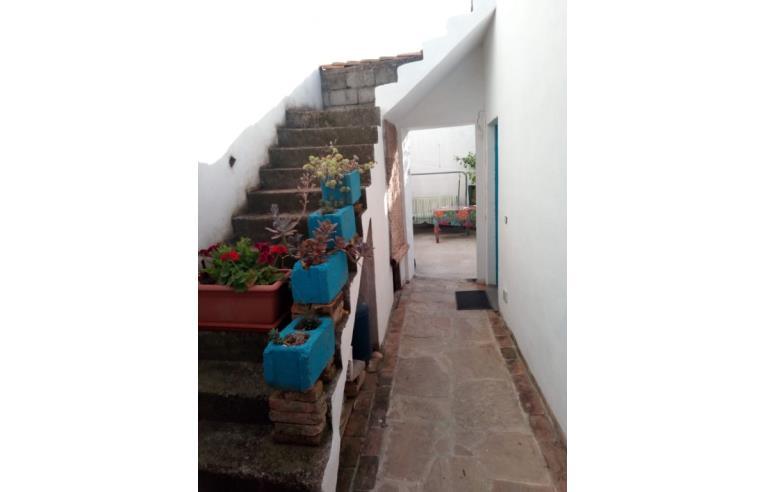 Foto 8 - Casa indipendente in Vendita da Privato - Galtellì (Nuoro)