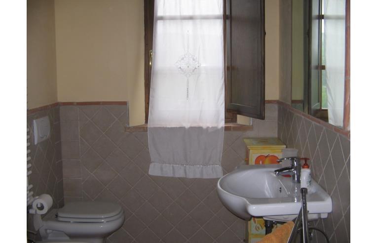 Foto 6 - Rustico/Casale in Vendita da Privato - San Gimignano (Siena)
