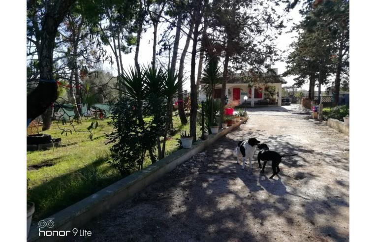 Foto 1 - Villa in Vendita da Privato - Brindisi (Brindisi)