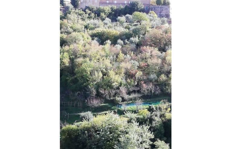 Foto 2 - Appartamento in Vendita da Privato - Siena, Frazione Monastero