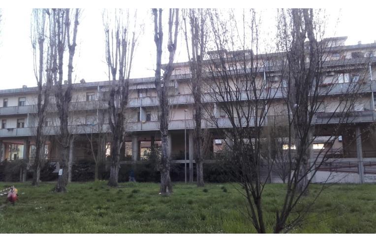 Foto 7 - Appartamento in Vendita da Privato - Montevarchi (Arezzo)