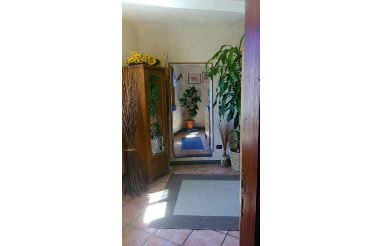 Foto 3 - Casa indipendente in Vendita da Privato - Camaiore, Frazione Pontemazzori