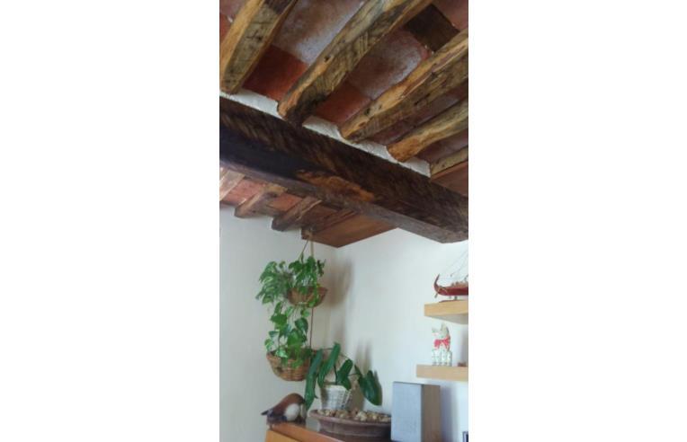 Foto 6 - Casa indipendente in Vendita da Privato - Camaiore, Frazione Pontemazzori