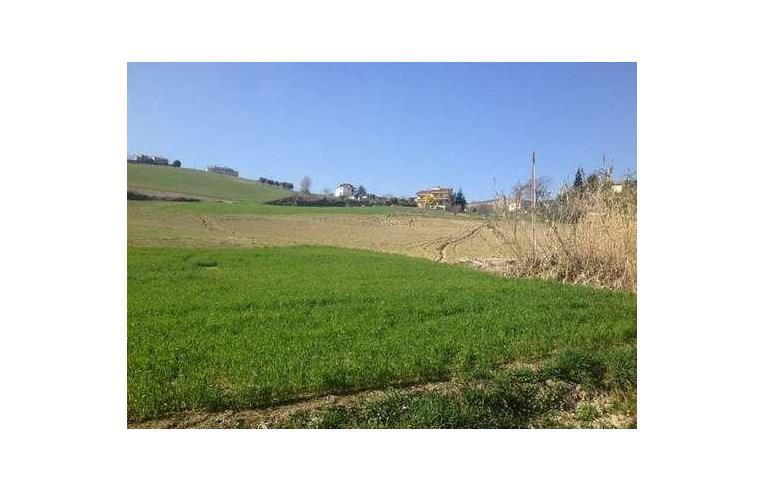 Foto 2 - Rustico/Casale in Vendita da Privato - Rotella (Ascoli Piceno)