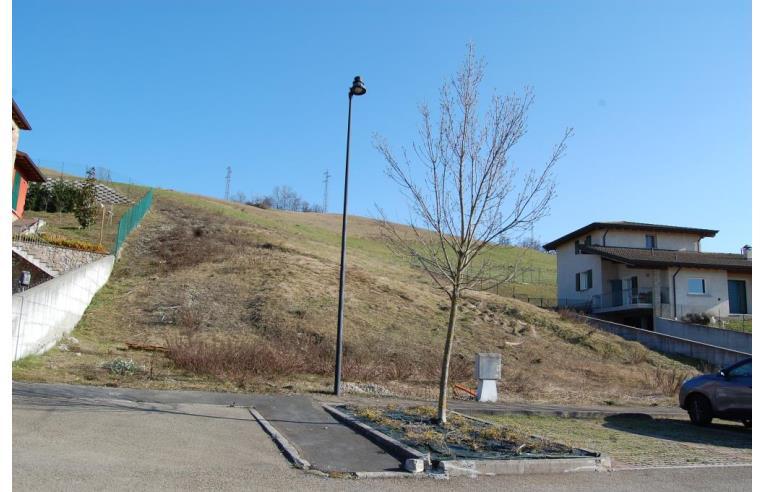Foto 2 - Altro in Vendita da Privato - Canossa (Reggio nell'Emilia)